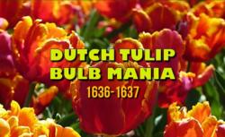 Dutch tulip mania